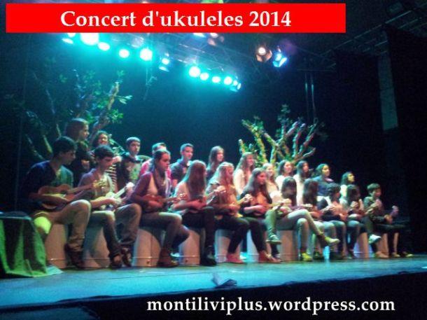 montilivi plus institut girona concert ukuleles 2014 03